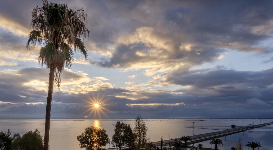 Messolonghi palm tree sunset