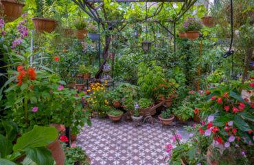 (small)june garden